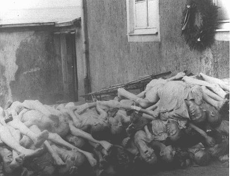 Corpses stacked behind the crematorium in Buchenwald. Germany, May 1945. - US Holocaust Memorial Museum