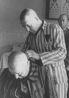 Shaving an inmate at the Sachsenhausen concentration camp. Germany, 1942. - US Holocaust Memorial Museum