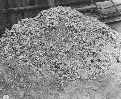 One of many piles of ashes and bones found by US soldiers at the Buchenwald concentration camp. Germany, April 14, 1945. - National Archives and Records